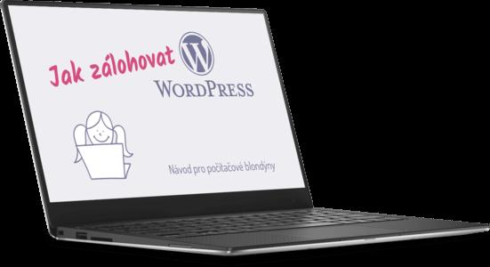 Online kurz Jak zálohovat web na WordPressu